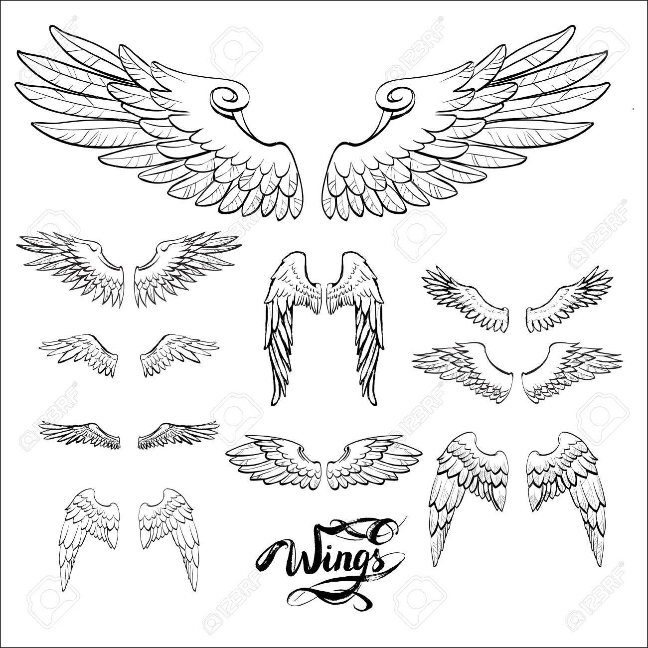 angel wings vector lettering drawing stock photo picture and Buffalo Wild Wings angel wings vector lettering drawing stock photo 73105833