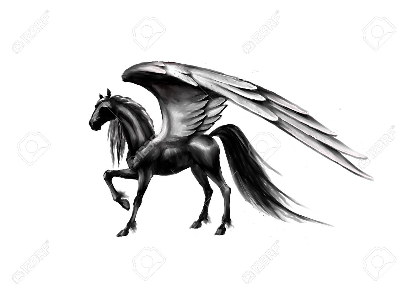 Pegasus Black Horse Wings Fantasy Pattern Stock Photo Picture And Royalty Free Image Image 73013946