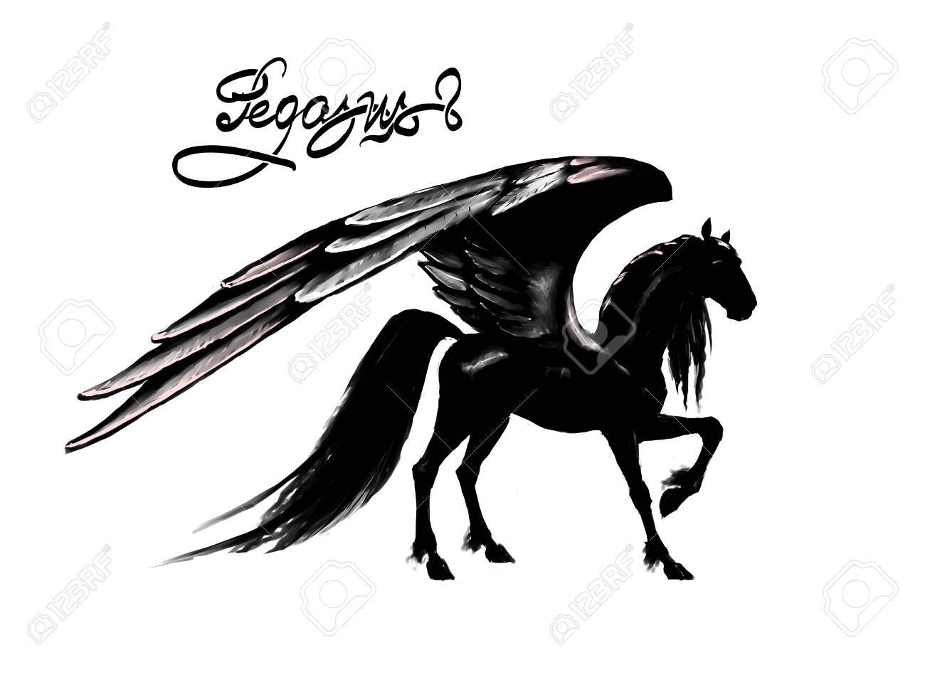 Pegasus Black Horse Wings Fantasy Pattern Stock Photo Picture And Royalty Free Image Image 73014737