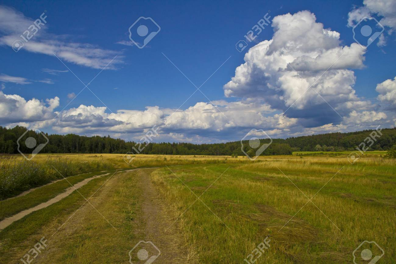 Russian landscape  Field, forest and dirt road near village Barybino, Serpukhov district Stock Photo - 14503380