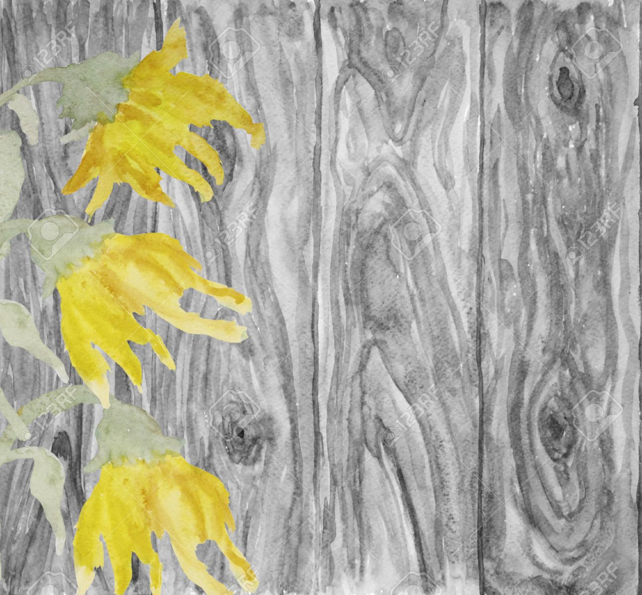 Flowers Sunflower Located On A Rustic Wooden Background With Space For Your Message Or Text