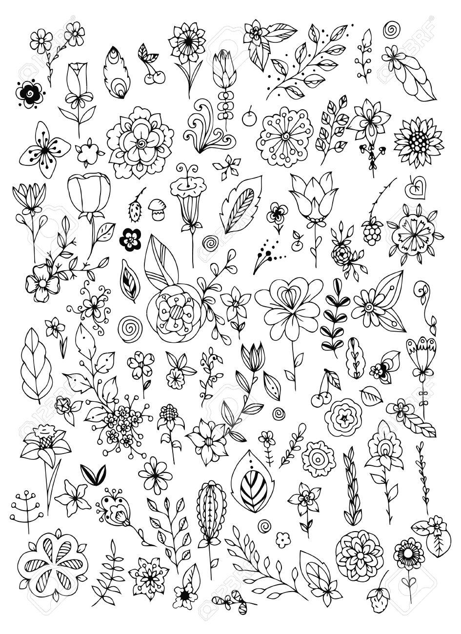 Conjunto De Blanco Y Negro De Flores Del Doodle Hojas. Elementos De ...