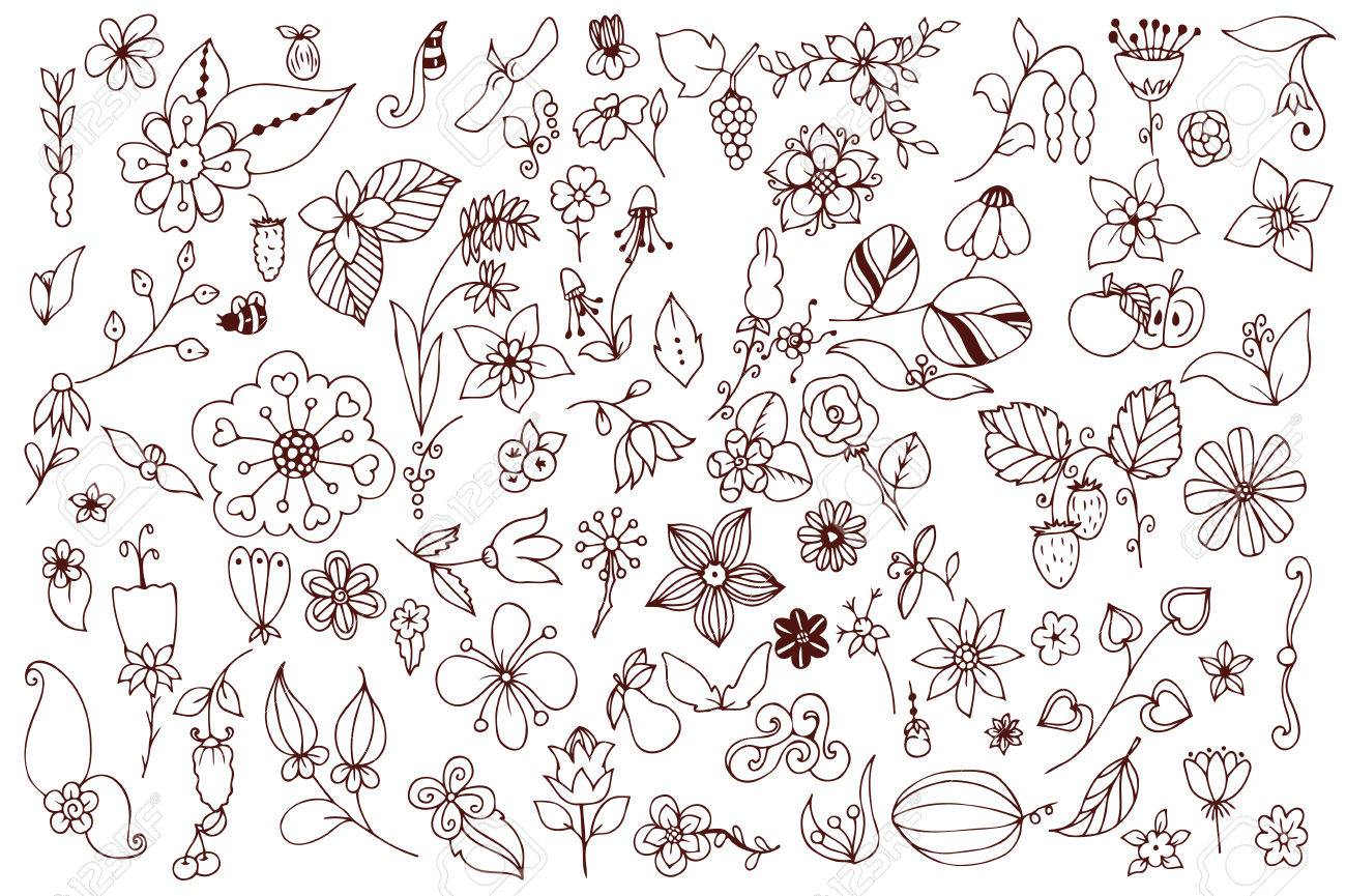 Conjunto De Blanco Y Negro De Flores Del Doodle Hojas. Dibujado A ...