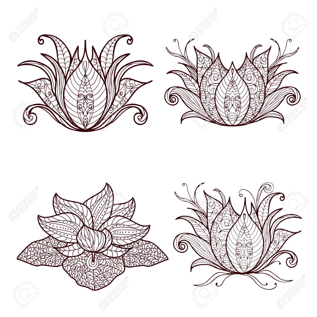 Mano Dibujado Conjunto De Elementos De La Flor De Loto De La Alheña