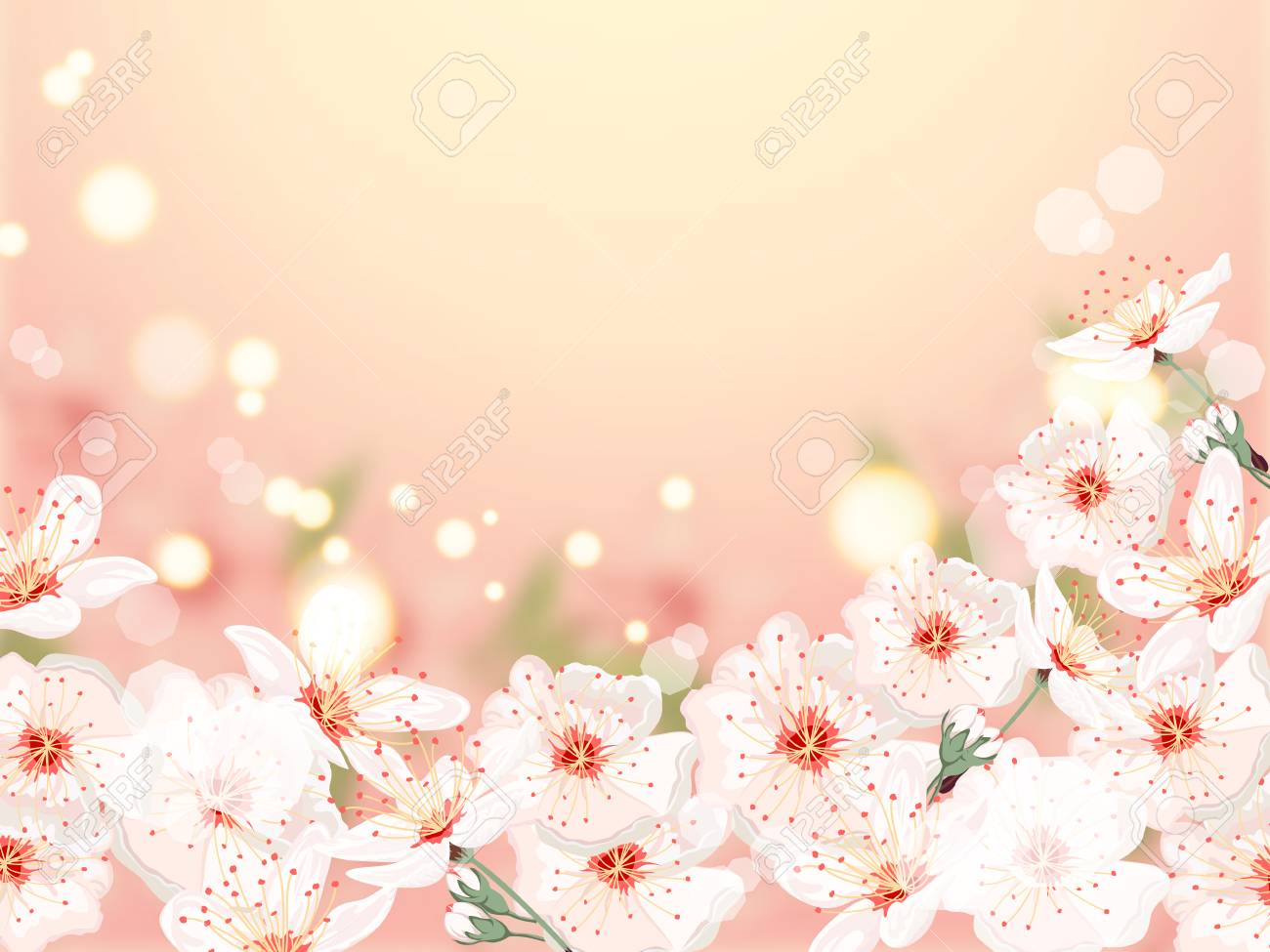 Bunch Of White Flowers On Peach Light Background Vector Banner