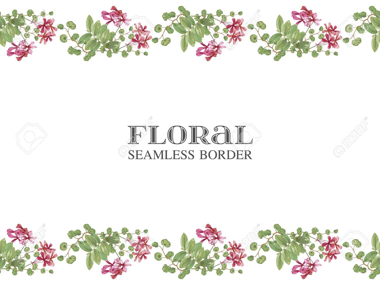 Border of wild tropical flowers and leaves. Linear horizontal seamless pattern on white. Vector floral background with blooming botanical motifs - 125271288