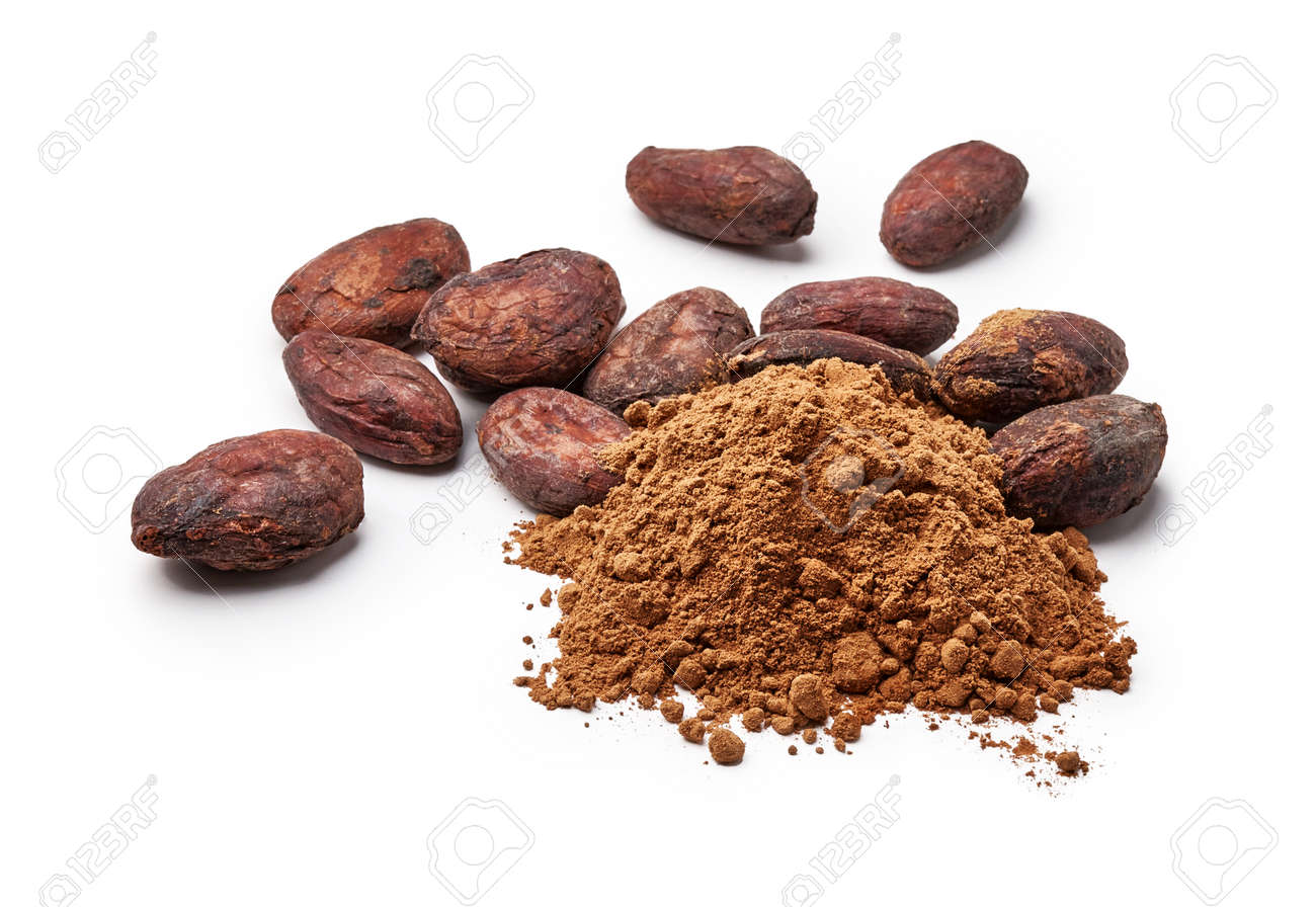 Cocoa powder and cocoa beans isolated on white - 155399222