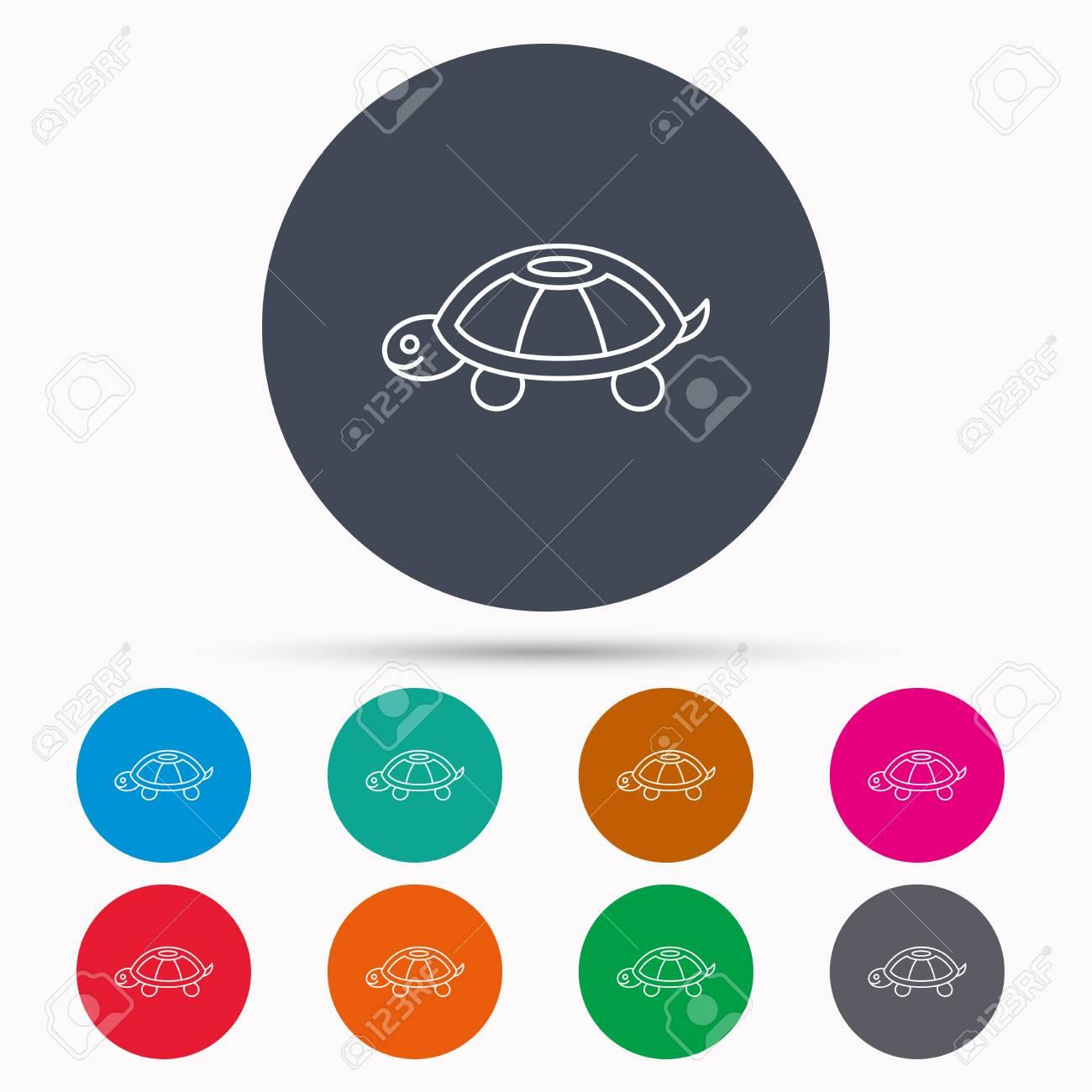 Turtle icon tortoise sign tortoiseshell symbol icons in colour turtle icon tortoise sign tortoiseshell symbol icons in colour circle buttons vector biocorpaavc
