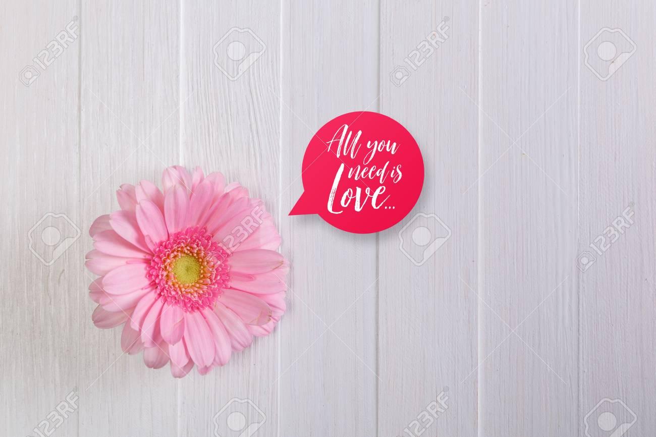 Pink Gerbera Flower On White Wood Vintage Background 8 March