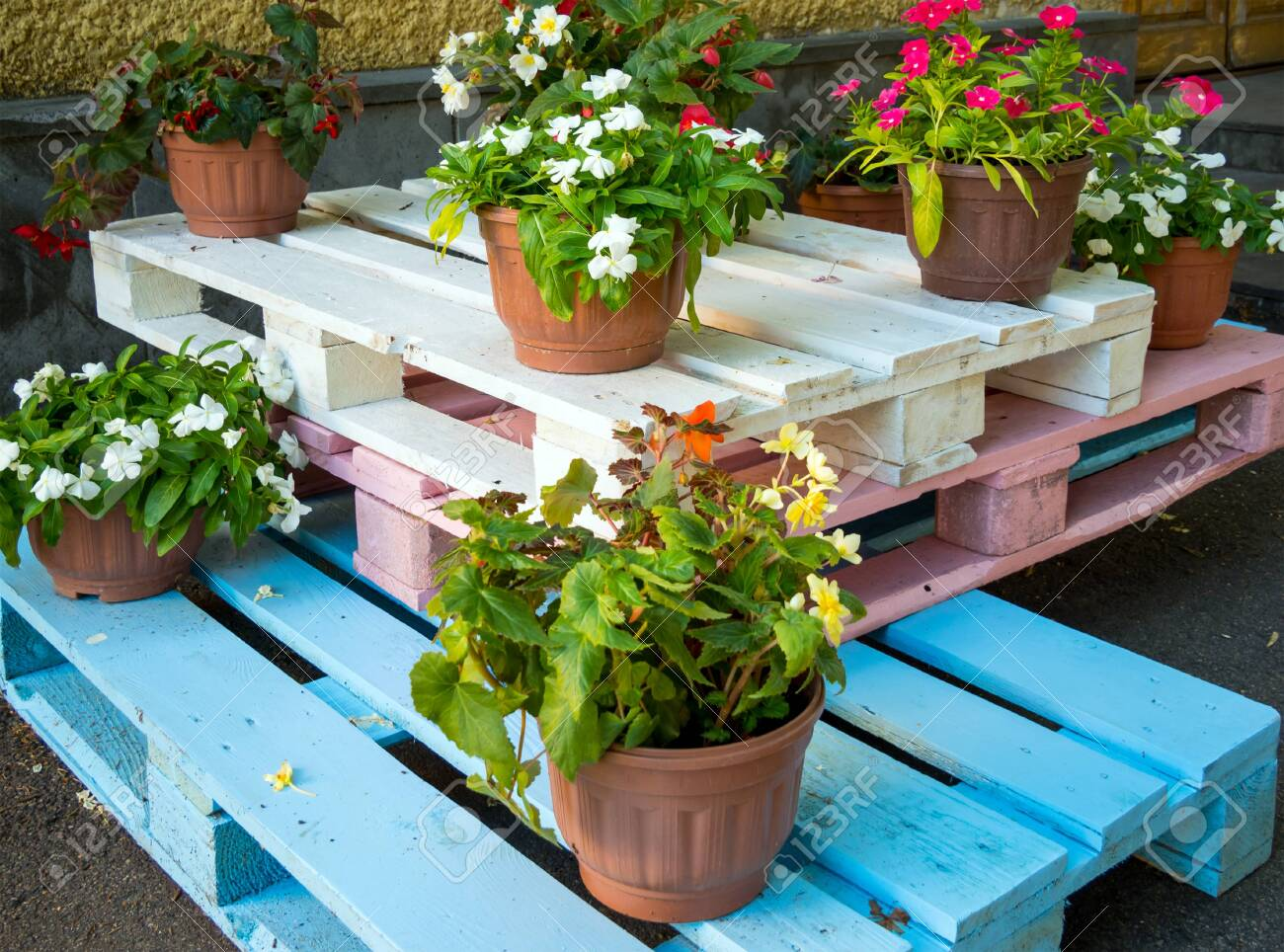 123RF.com & Flower pots stand on wooden pallets painted in different colors