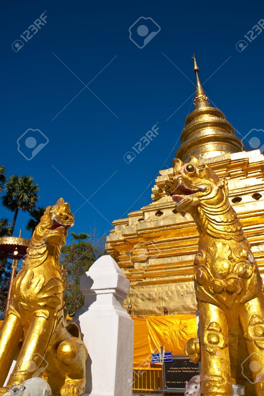 The tigers gloden in temple Stock Photo - 9276435