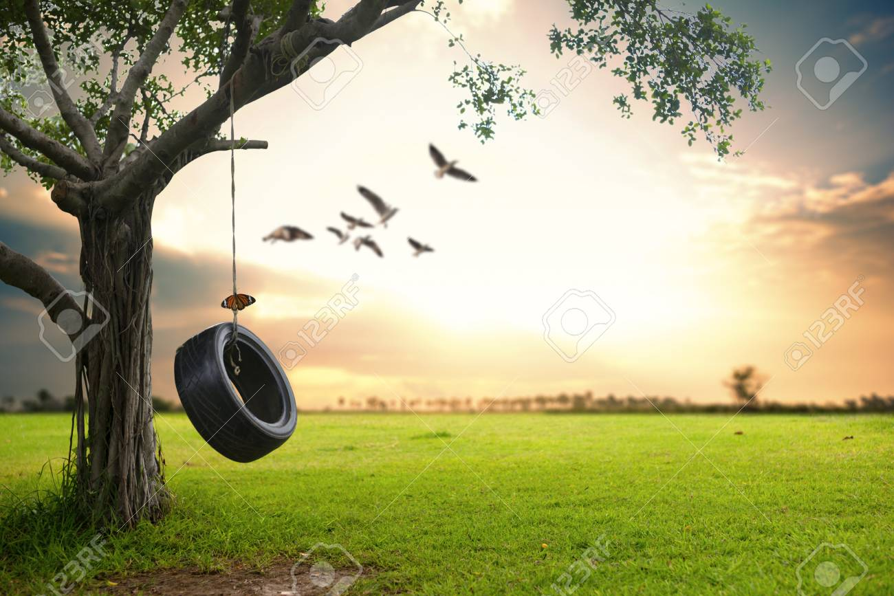 Beautiful Nature Background. Hanging Rubber Tire Under The Tree