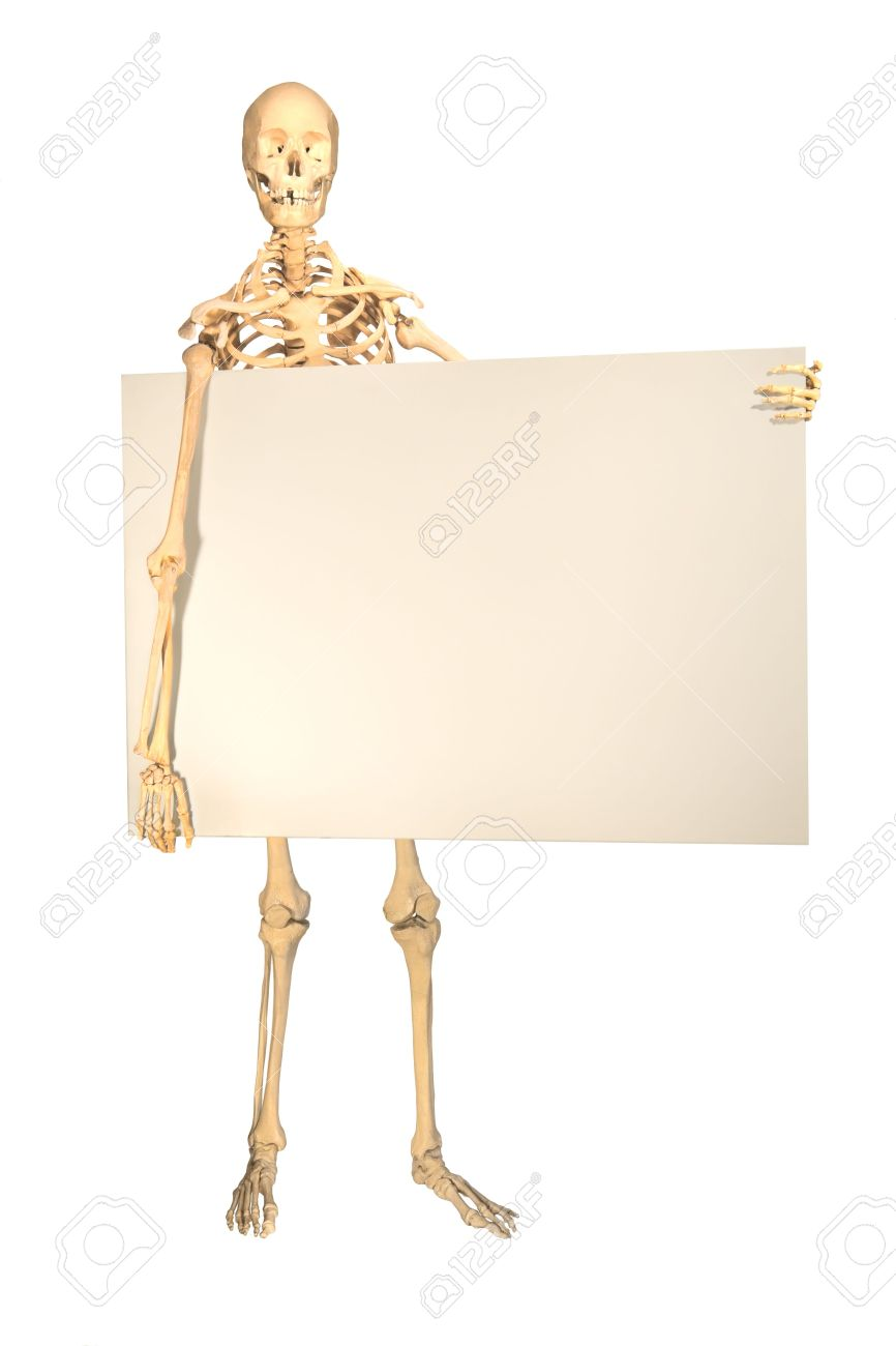 Full Human Skeleton Holding Blank Sign For Copyspace Isolation