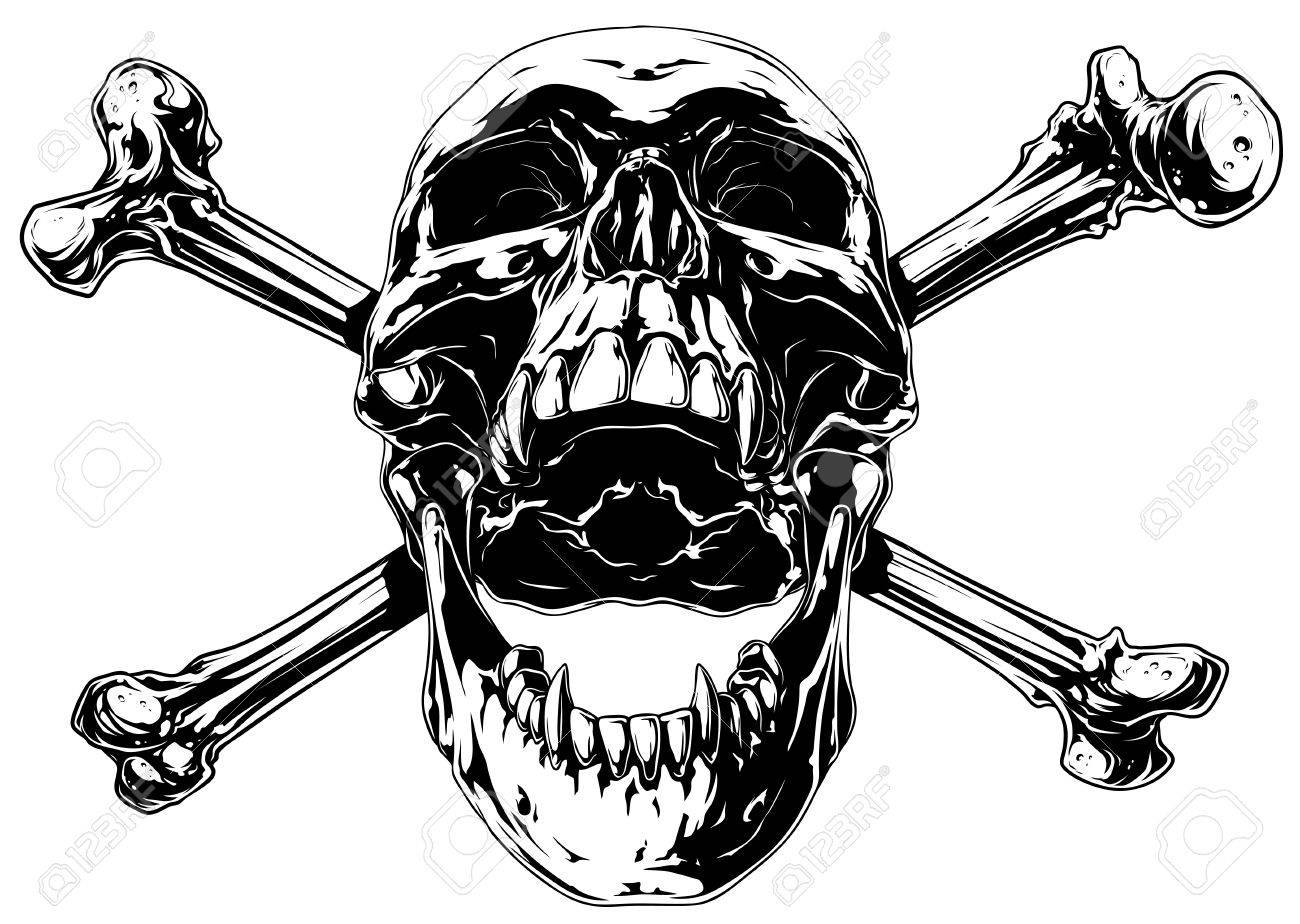 Gráfico Realista Cráneo Humano Con Huesos Cruzados Ilustraciones ...