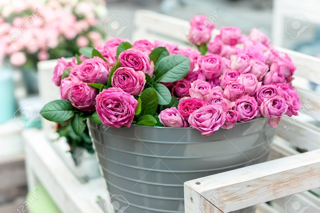 Beautiful Pink Roses In Bucket On Street Flower Market Pink Stock