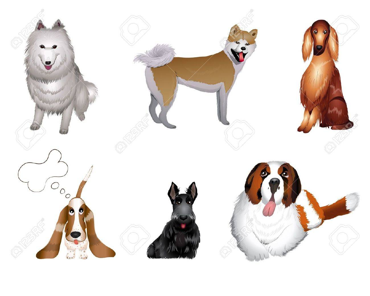 set breeds of dog vector illustrations eps 10 Stock Vector - 12491183