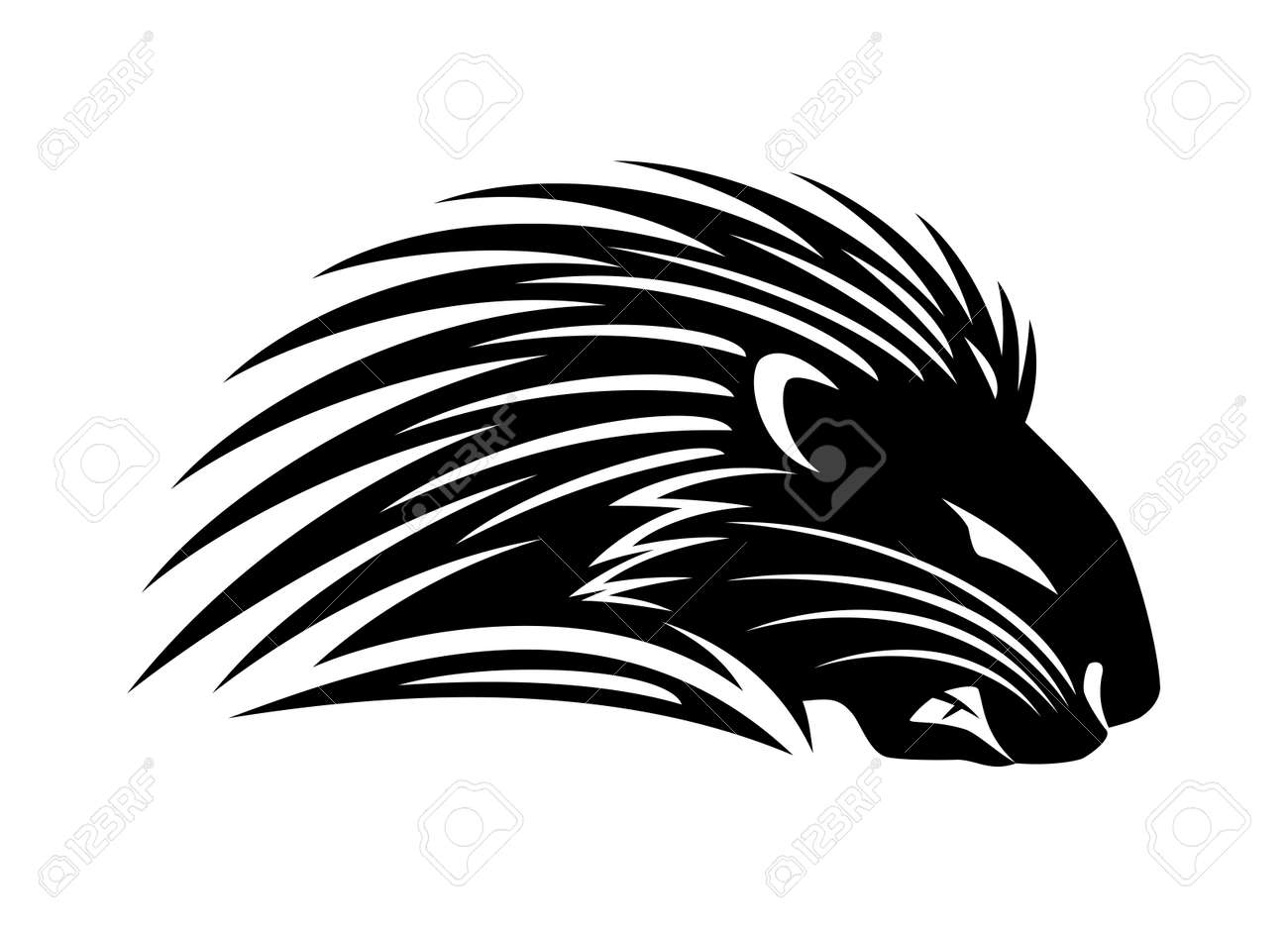 Illustration with angry porcupine icon on white background. - 166065641