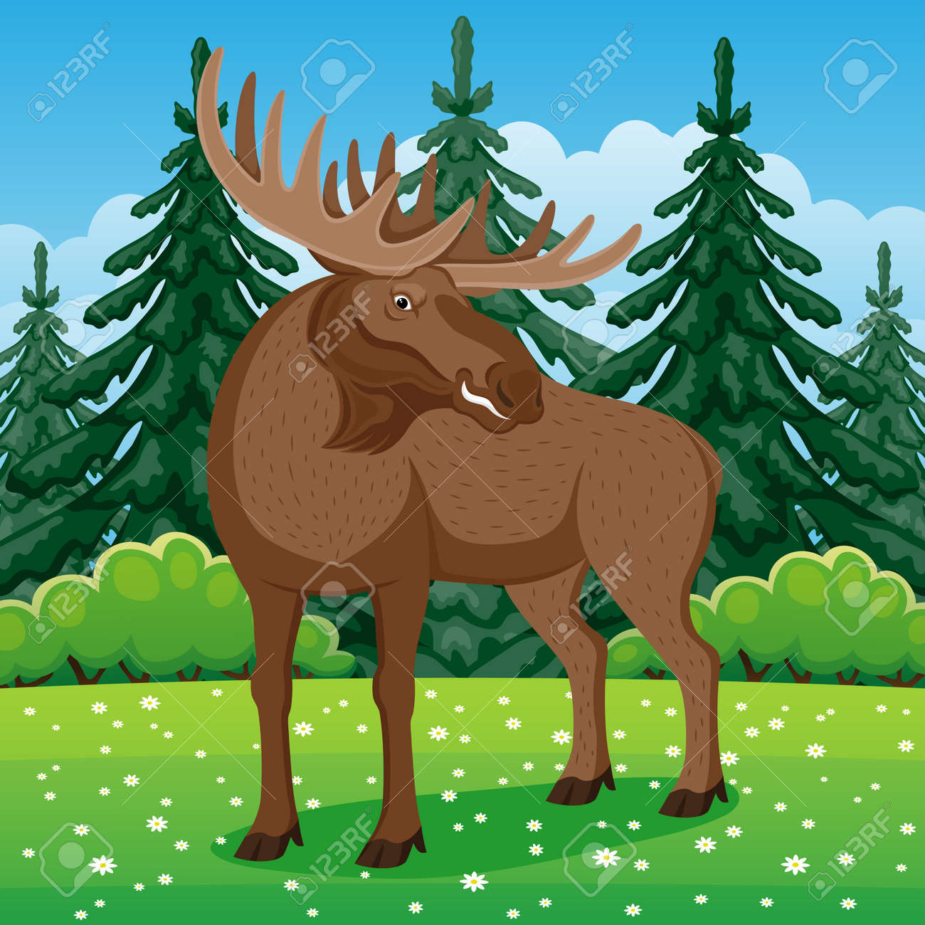 Nature illustration with moose on grass in coniferous forest. - 166379853