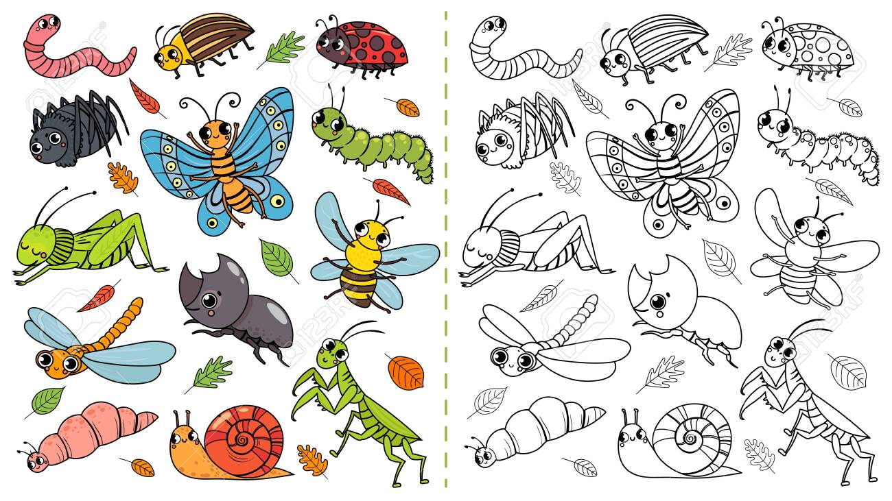 Cartoon Insects Color Painting Game Draw Cute Insect With Kids