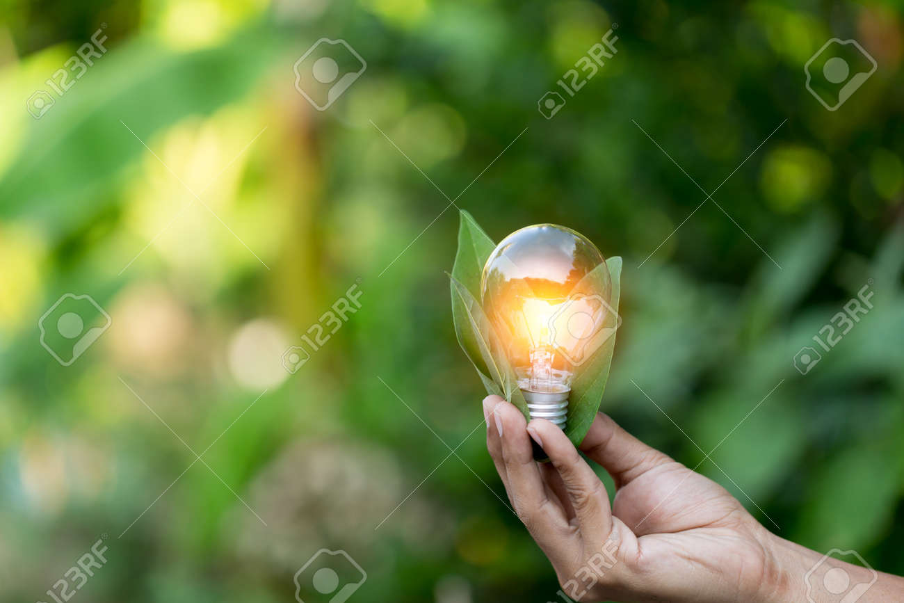 Hand holding light bulb with icons energy sources for renewable,love the world concept. - 156081598