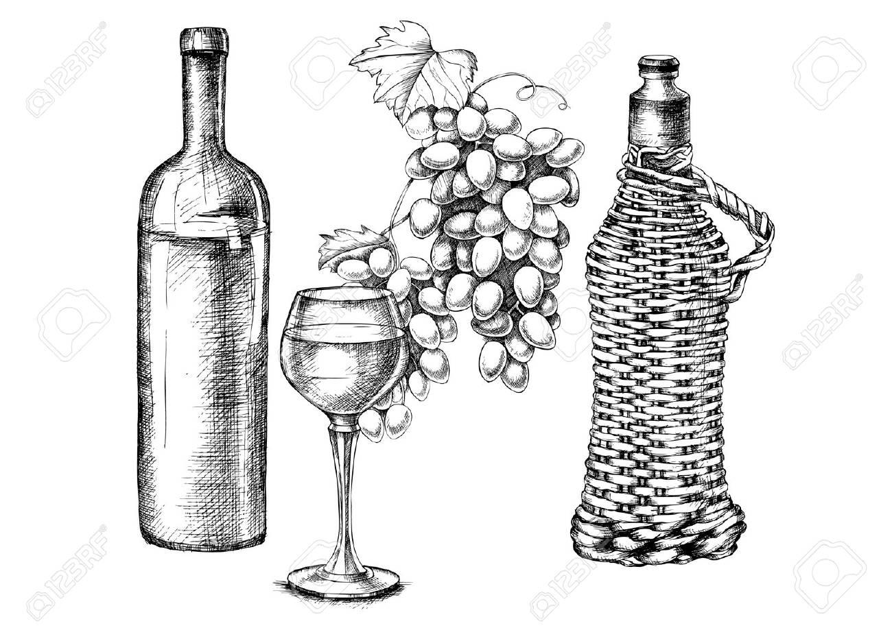 Vecteur série de raisins, vin, verre, bouteille avec style de dessin à main pour la conception