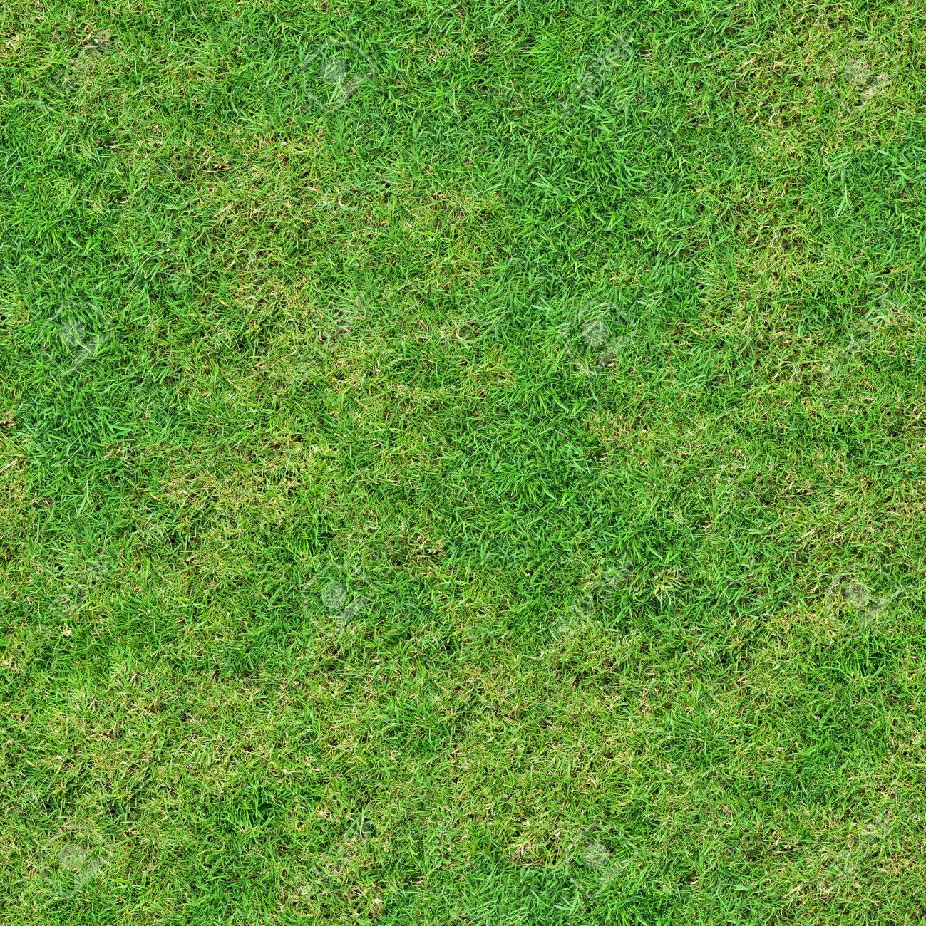 新鮮な緑の草原草地。シームレス...