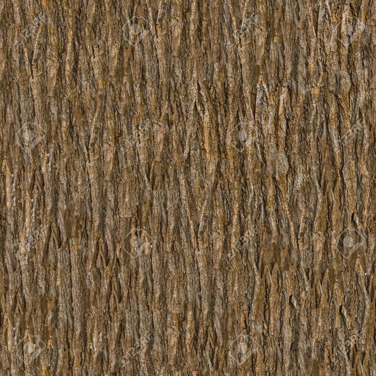 Wooden Bark. Seamless Tileable Texture. - 101490642