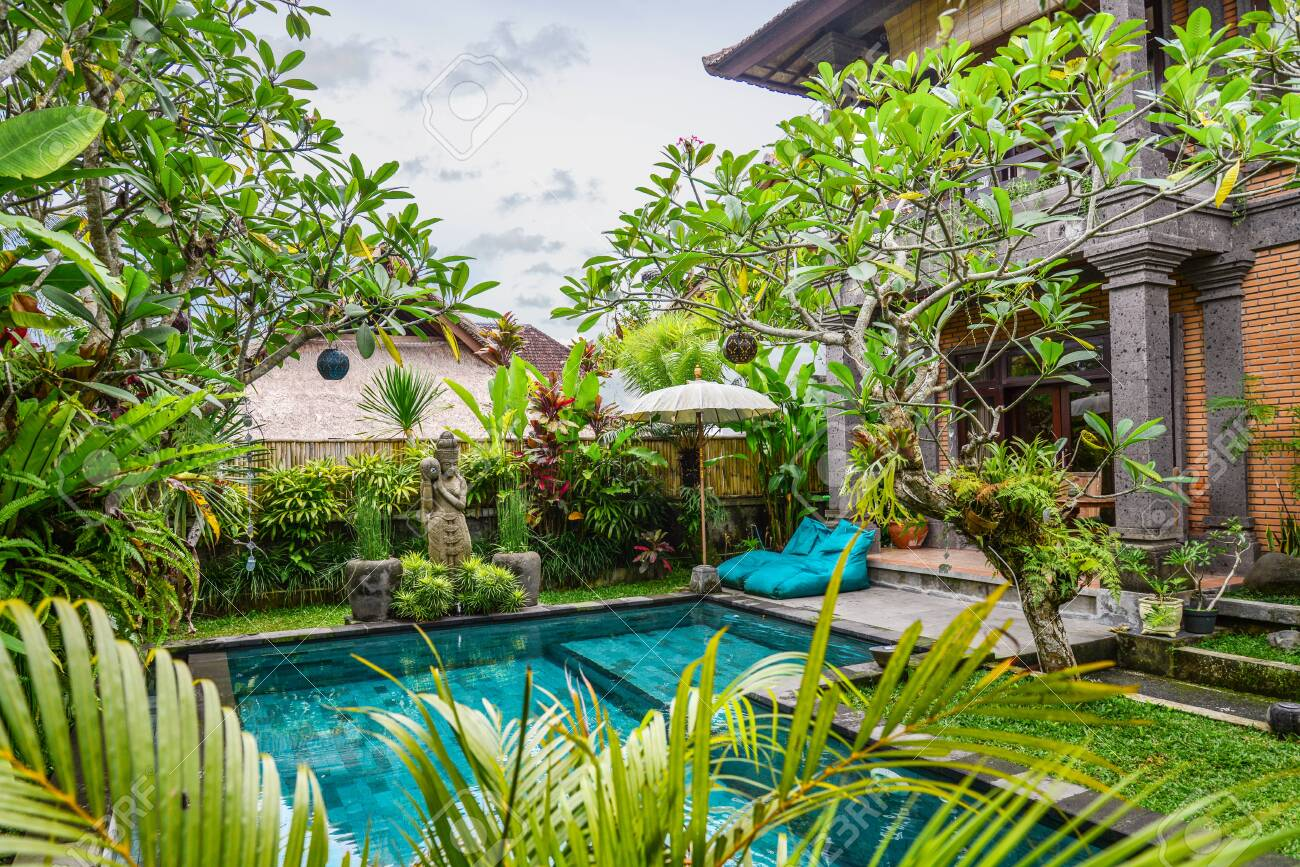 Garden on back yard with swimming pool and cozy gazebo near traditional..