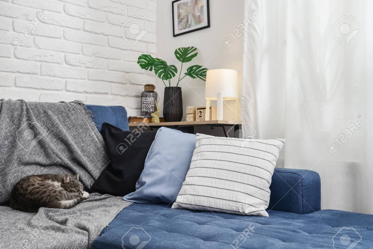 Bright Living Room In Scandinavian Style With Blue Couch Decorative Stock Photo Picture And Royalty Free Image Image 133234922