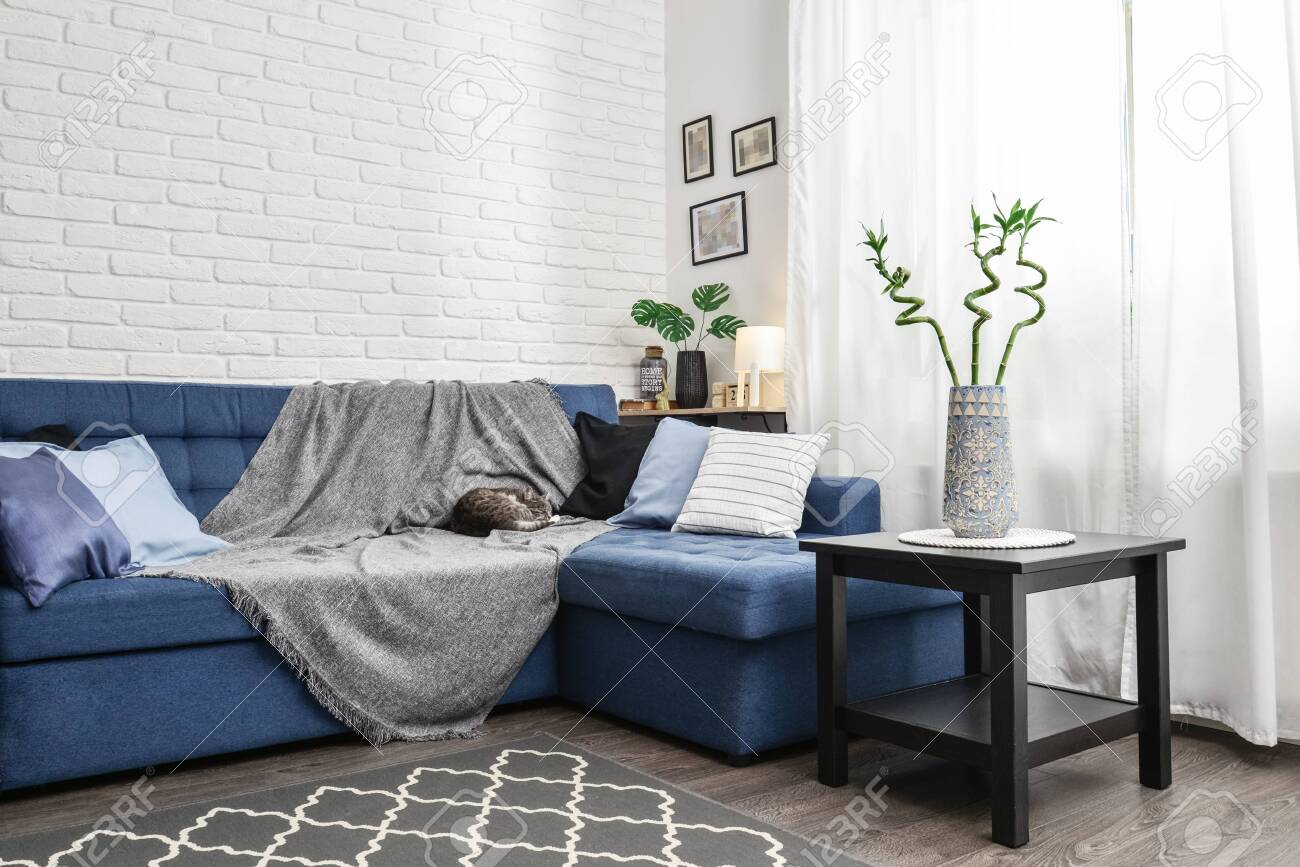 Image of: Bright Living Room In Scandinavian Style With Blue Couch Decorative Stock Photo Picture And Royalty Free Image Image 133228317