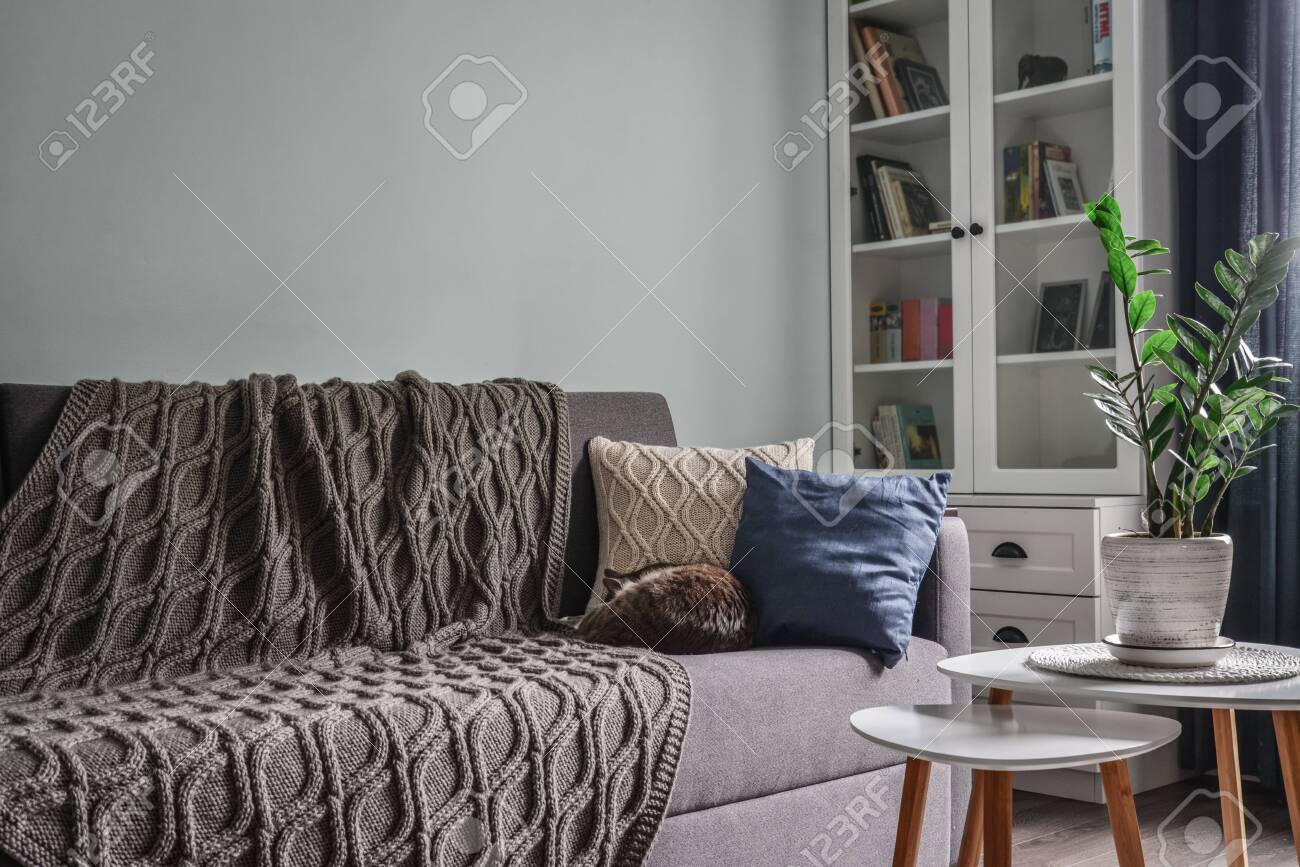 Picture of: Light Cozy Teen Room With White Bookcases Grey Sofa And Blue Stock Photo Picture And Royalty Free Image Image 148048795