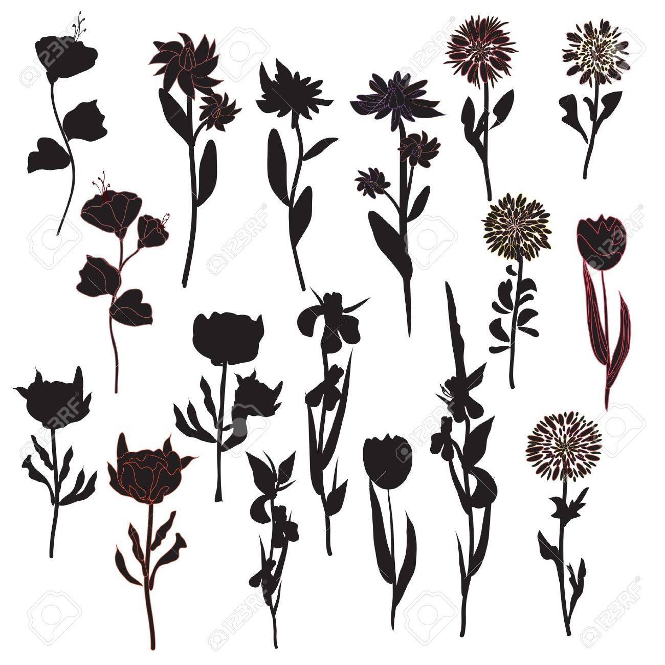 Flowers silhoette set in black Stock Vector - 11780194