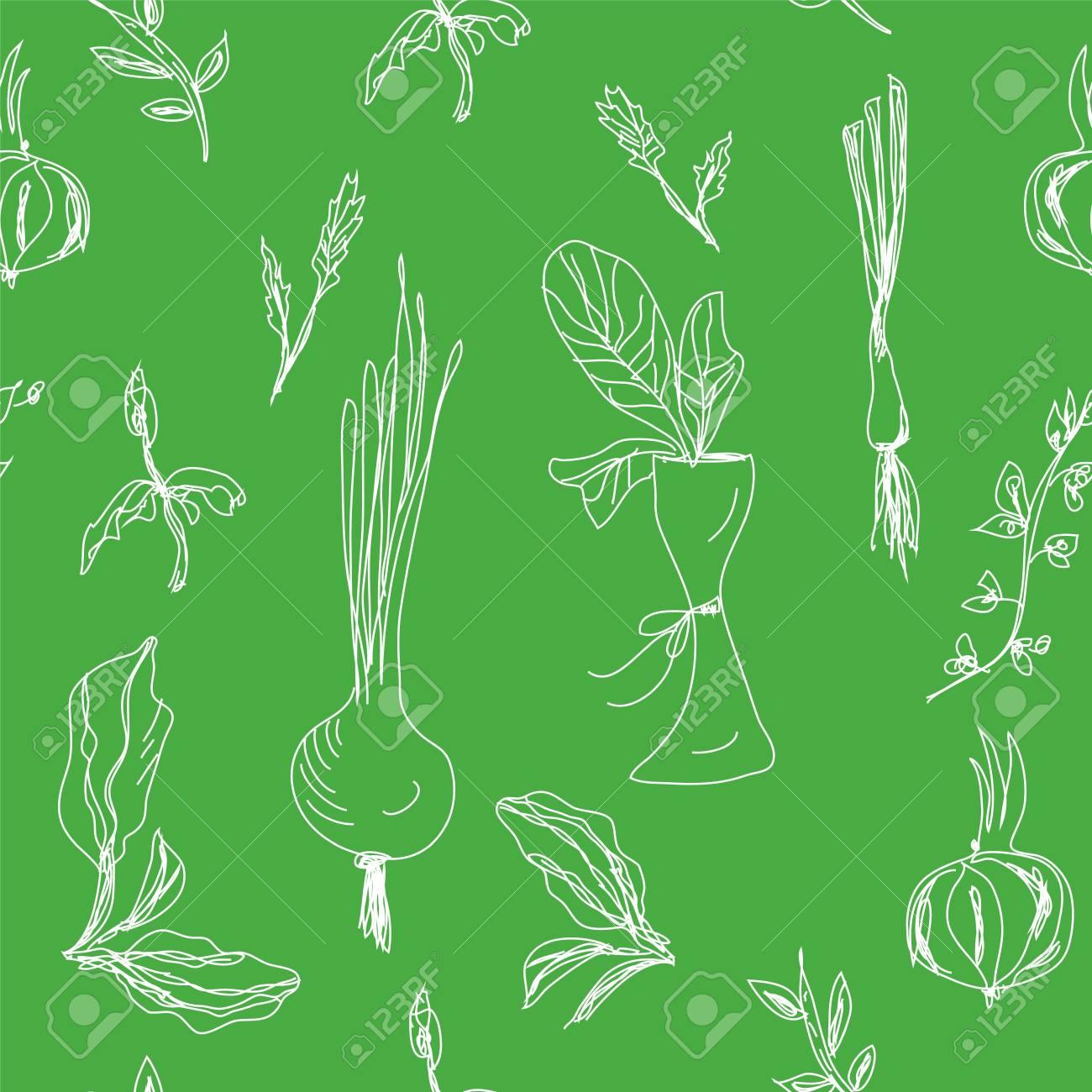 Greens and salad seamless hand drawn design Stock Vector - 17851195