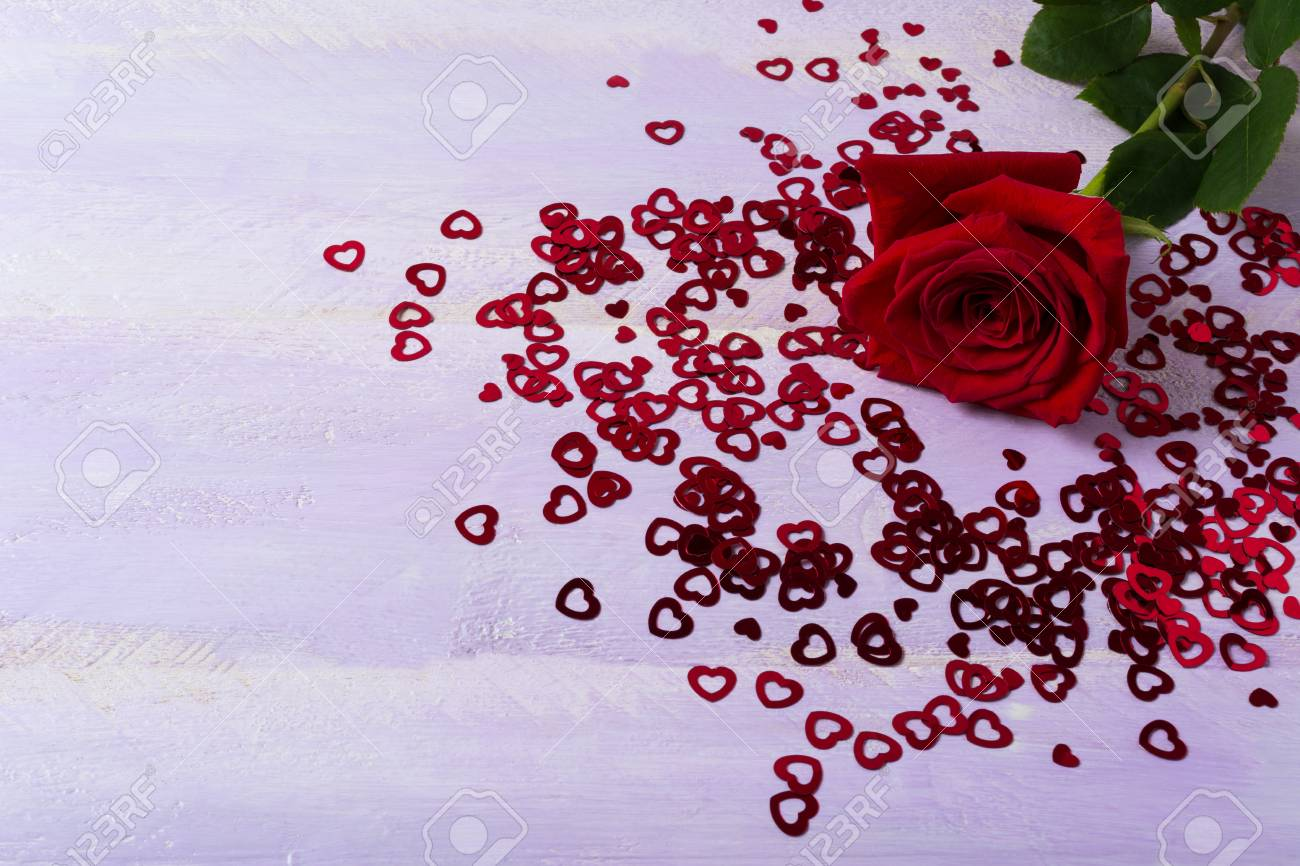 Burgundy Rose And St. Valentine Day Symbols On Lilac Background ...