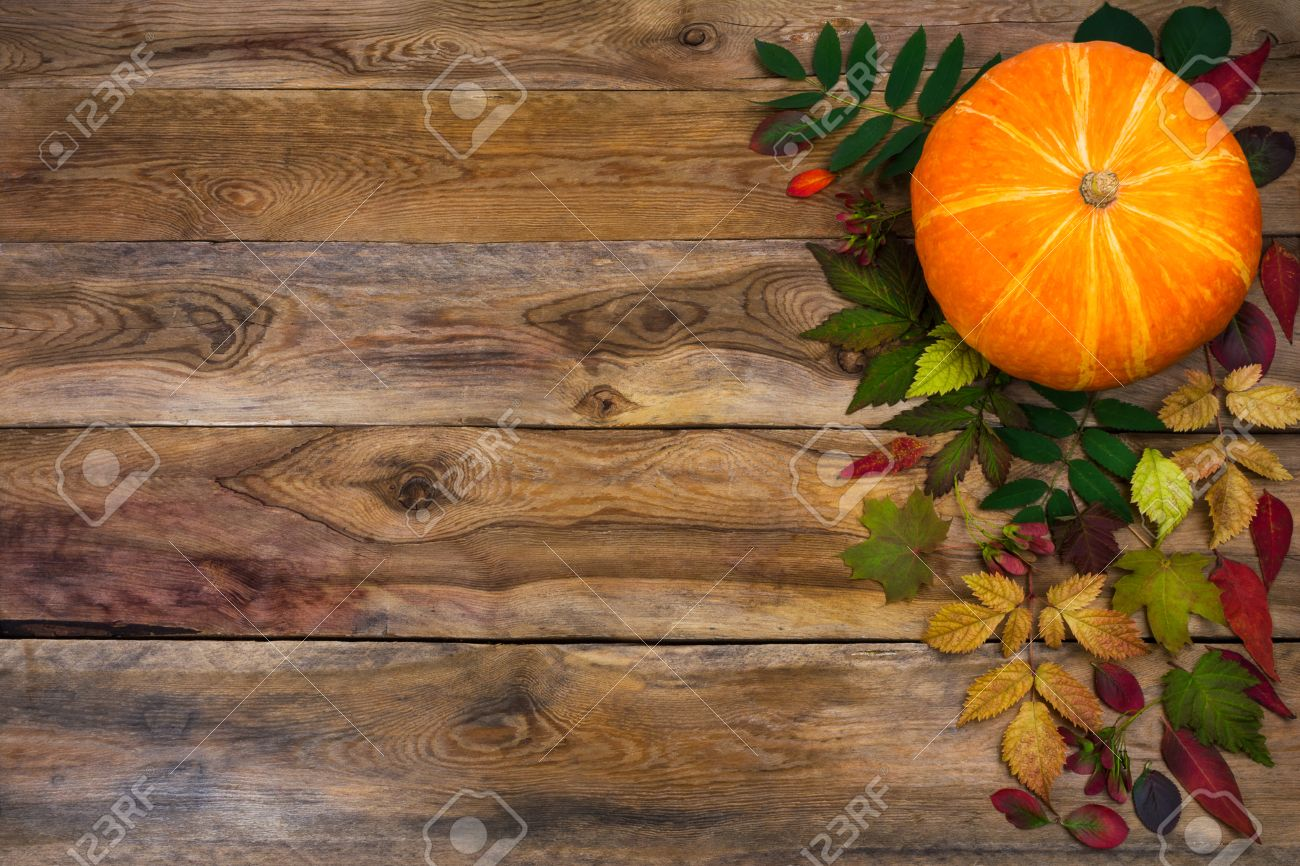 Happy Thanksgiving Background With Pumpkin And Autumn Leaves Stock