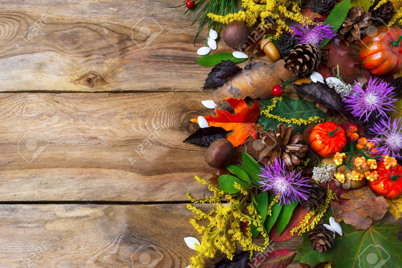 Fall Background With Pumpkin Apples And Purple Autumn Flowers