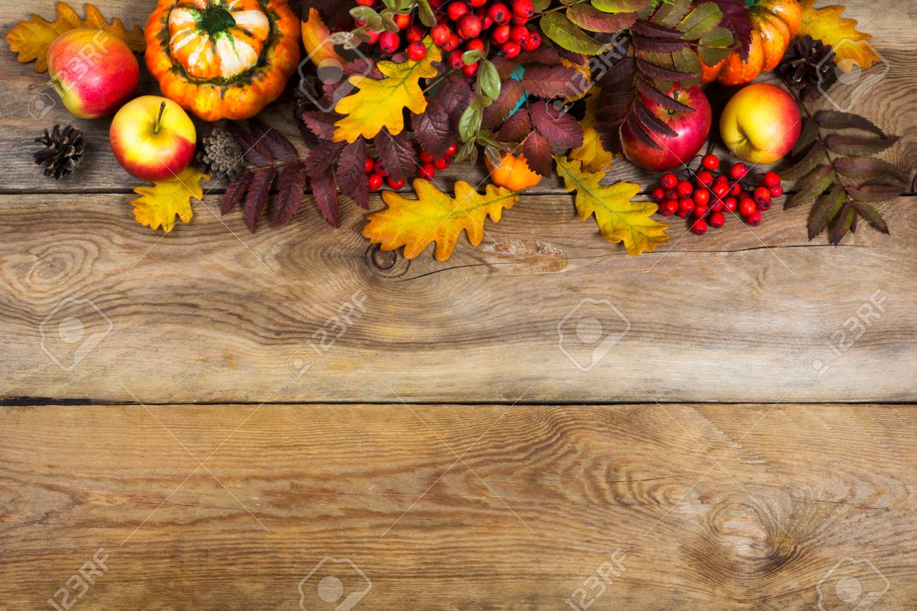 Fall Rustic Background With Cones Apples Pumpkins Red Rowan And Yellow Oak Leaves