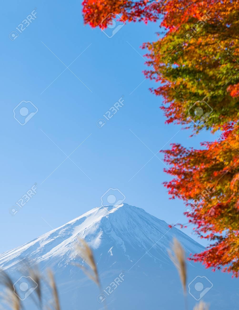 autumn red maple leaves mount Fuji - 105558048