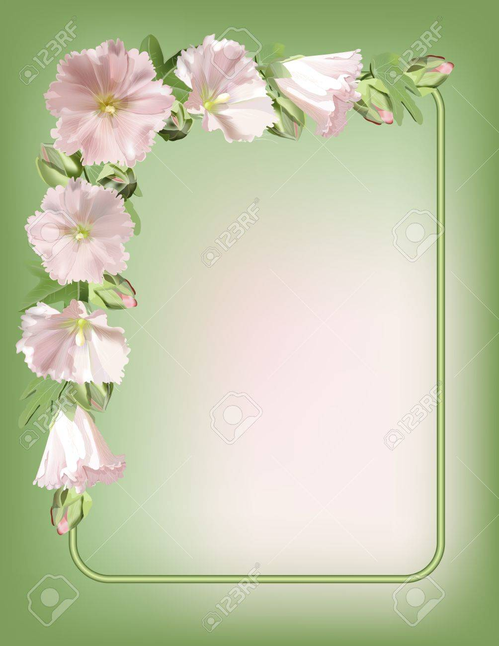 Floral Frame With Mallow Flowers Background