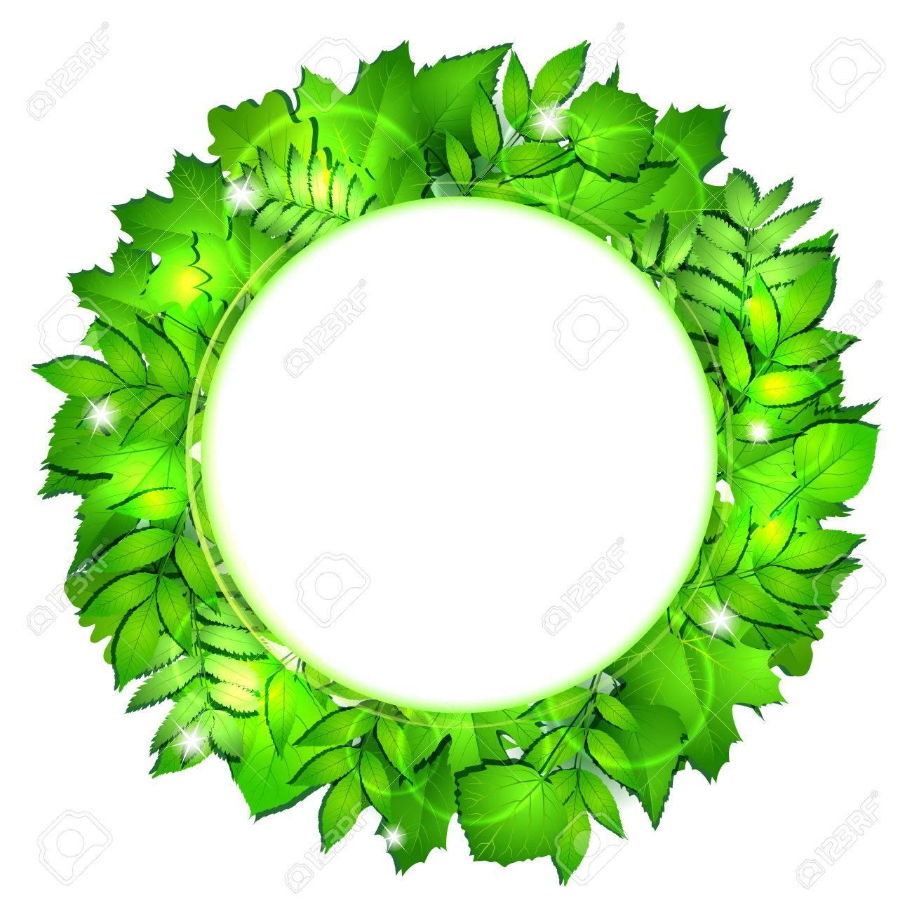 Fresh Green Leaves Round Border. Vector Illustration Stock Vector   39887861
