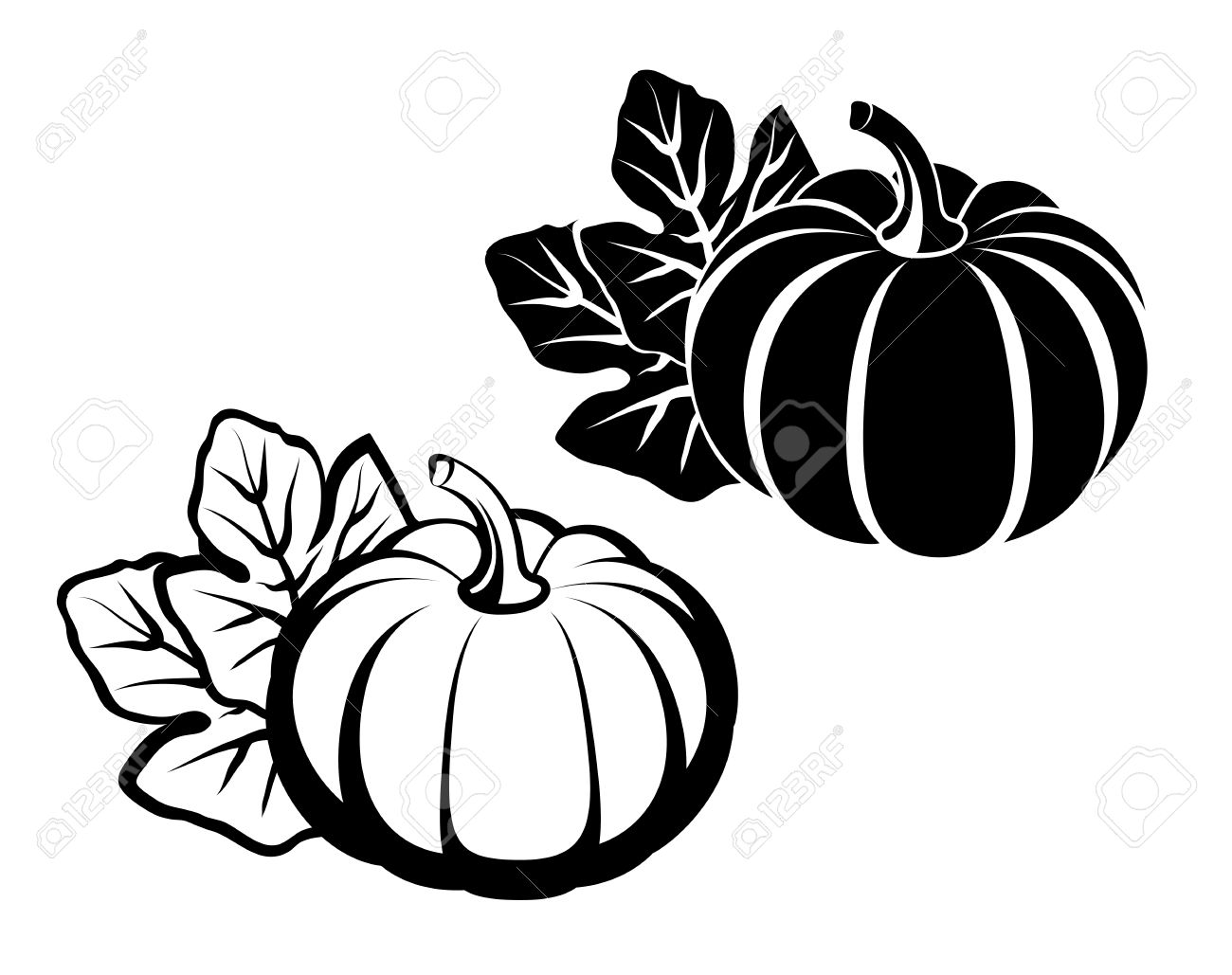 Pumpkins with leaves. Black silhouette on white background. Vector illustration - 47662203
