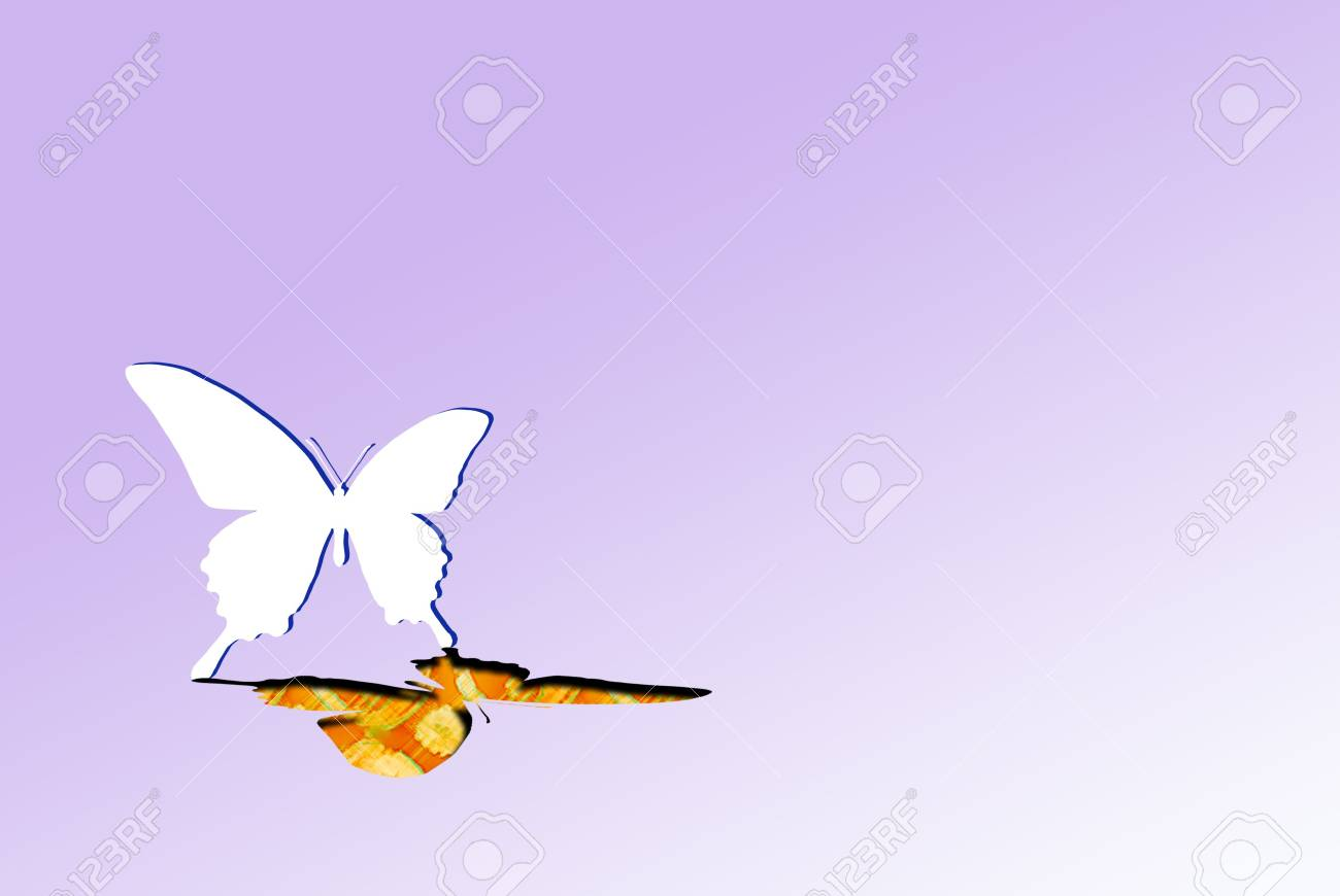 the Paper butterfly get up Stock Photo - 2346076