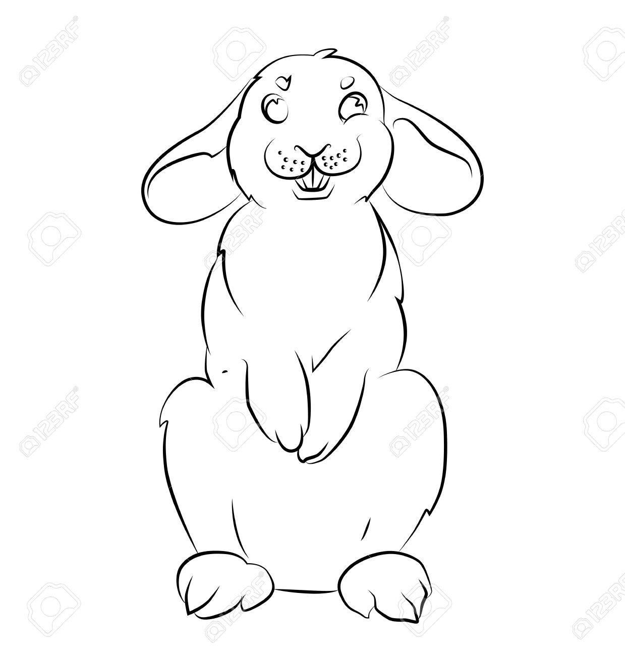 Hermosa Conejo Roger Para Colorear Regalo - Dibujos de Animales para ...