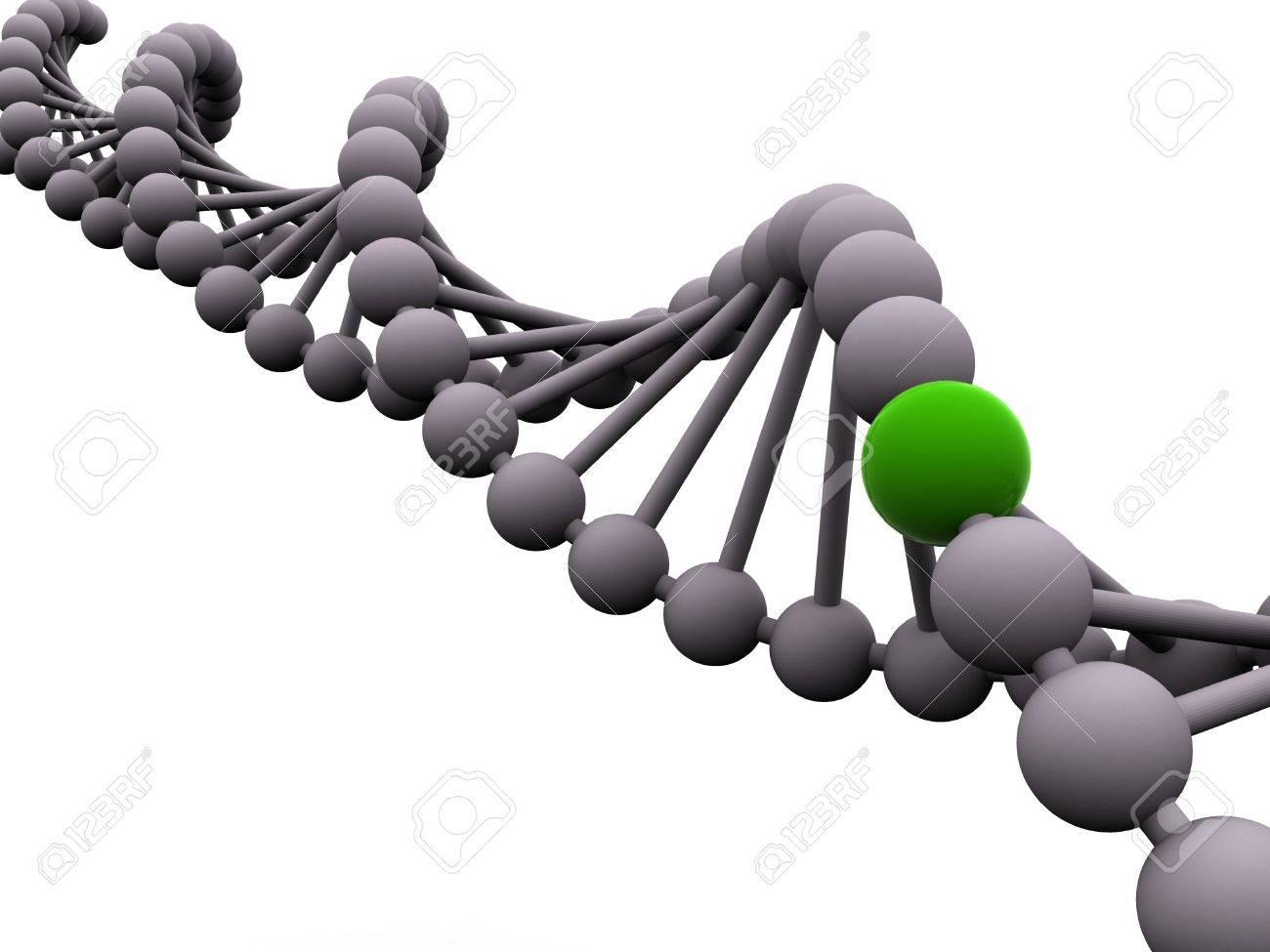 gene in DNA. 3d Stock Photo - 1164892