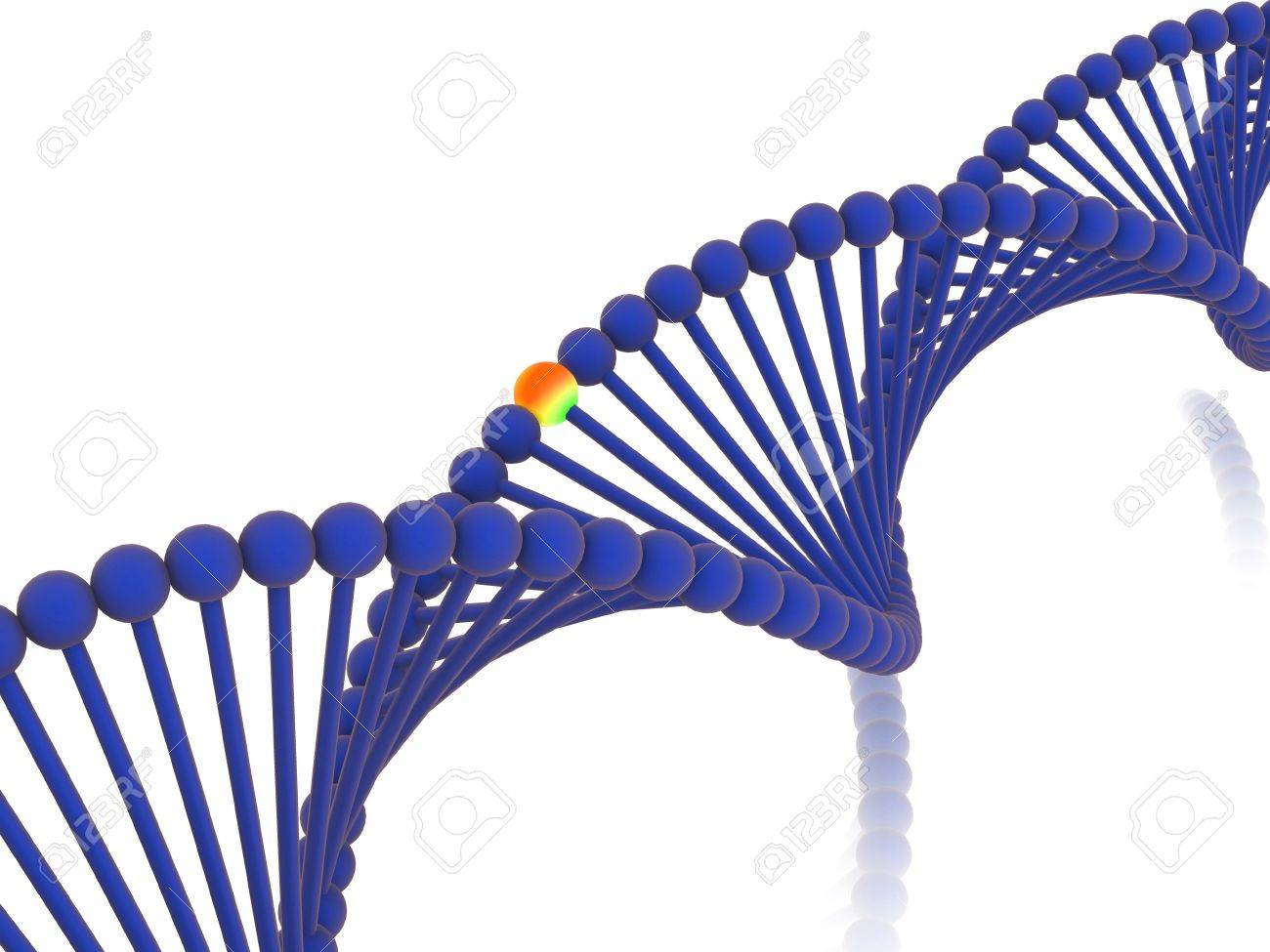 gene in DNA. 3d Stock Photo - 7613323