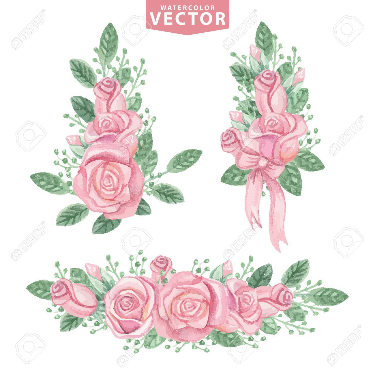 Watercolor Pink Roses Compositionste Vintage Flowers Royalty Free