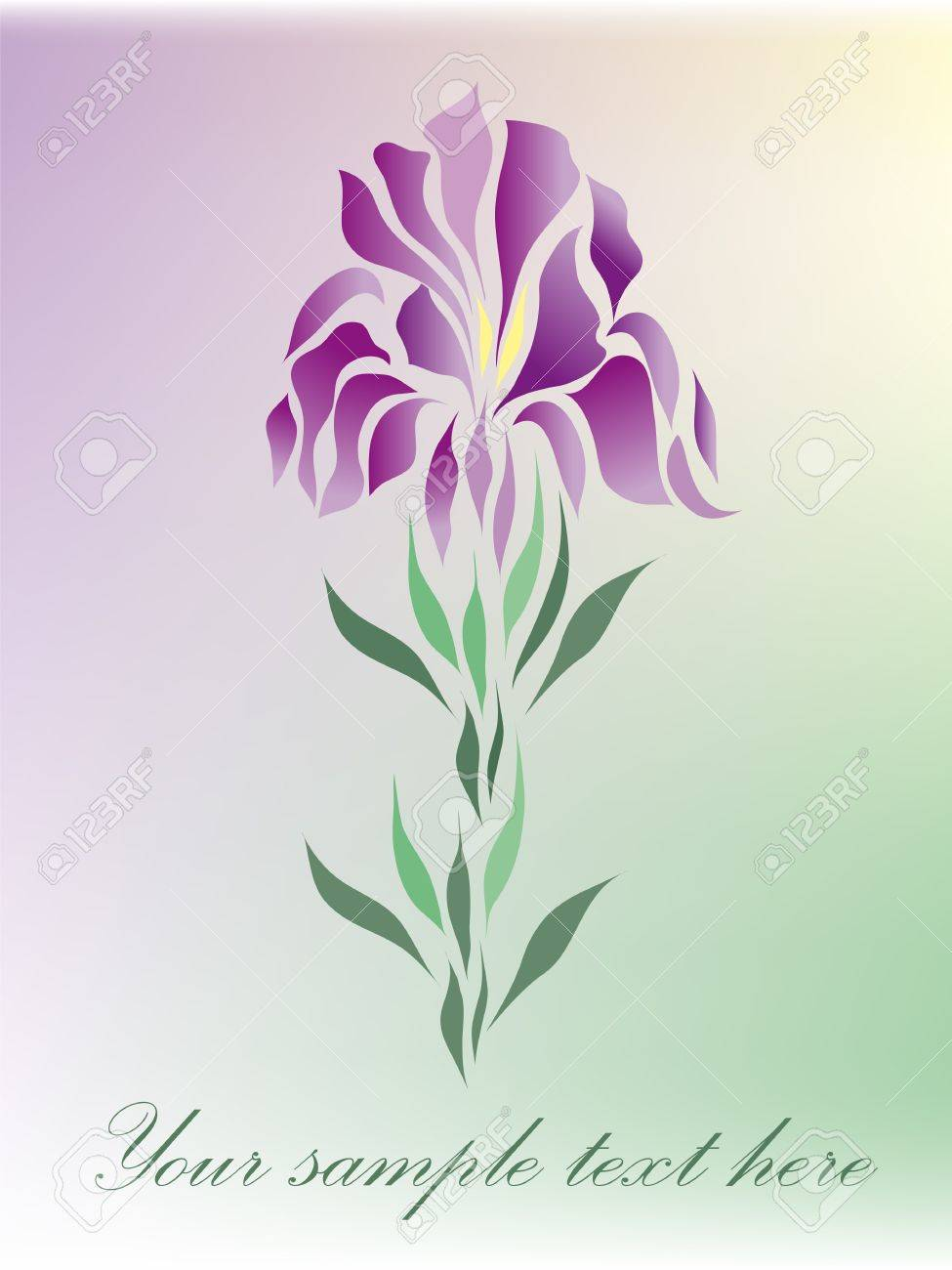 Vintage iris vector hand drawing isolated on pastel background with your text  eps 10 Stock Vector - 14189883