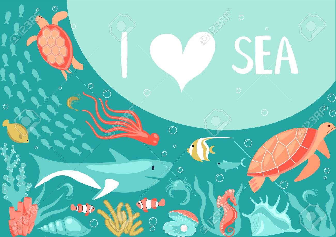 Aquamarine Life