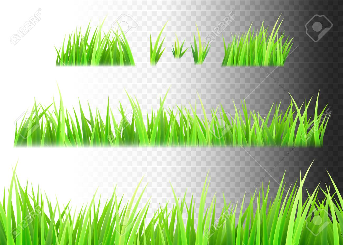 grass vector isolated on white black and transparent background royalty free cliparts vectors and stock illustration image 95323780 grass vector isolated on white black and transparent background