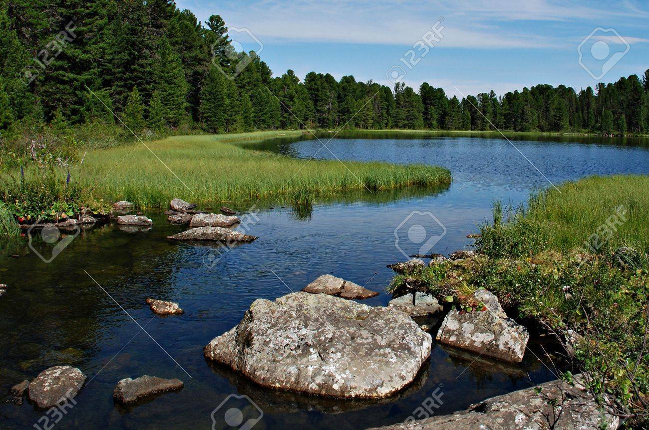 Wild forest, river and Karacol lake, Altai, Russia Stock Photo - 6702700